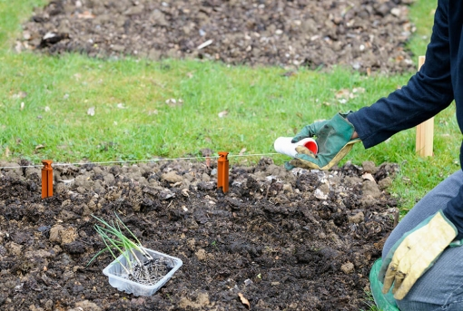 Landscaping-Stake