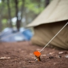 Tent-Stake
