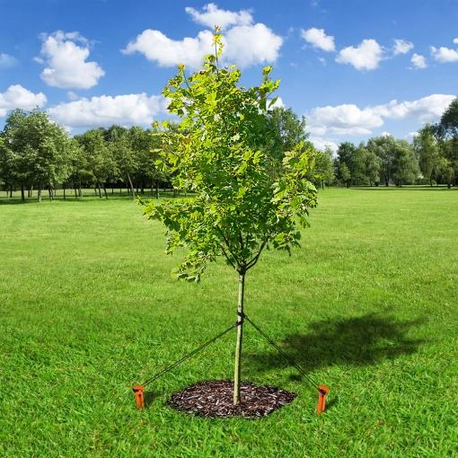 Tree-Stake