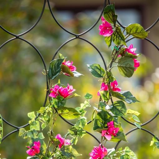 blacks-vigoro-garden-trellises-5